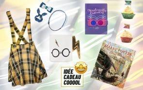 Plein d'idées cadeaux de Noël à offrir aux fans d'Harry Potter