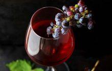 La machine qui transforme vos fruits en cidre vient sauver votre hiver