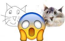 Affine Layer, un site pour dessiner des chats très laids (pourquoi pas après tout)