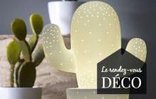 Onze cactus qui mettront du piquant dans ton appartement!