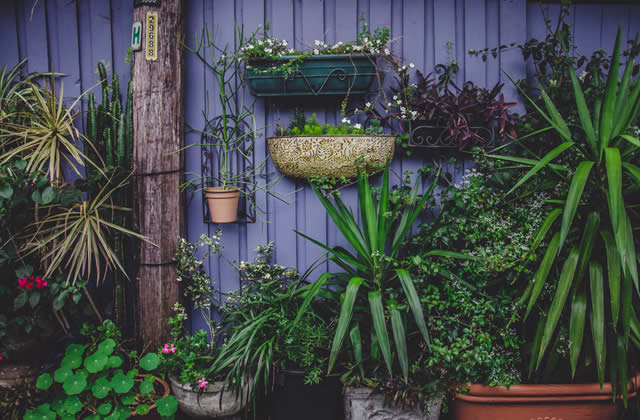 Et si on se mettait au jardinage? #FaisToiUneFleur
