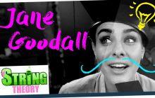Marion Seclin est Jane Goodall, protectrice des singes, dans le nouvel épisode des Scienceuses