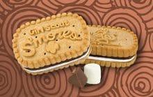 Les biscuits des scoutes américaines disponibles sur Amazon