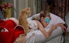 Quiz—Ta chambre est-elle idéale pour un sommeil au top?