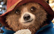 Le plus anglais des ours péruviens revient dans Paddington 2!