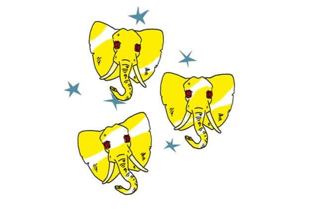 Le festival de musique et d'arts de rue Les 3 Éléphants croqué par YouSh