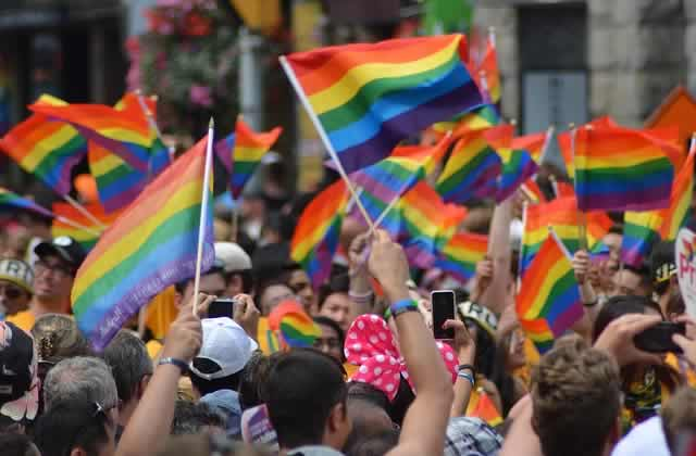 Les propos homophobes des candidats aux législatives mis en lumière par Avis défavorable