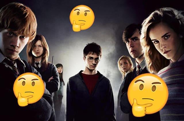 L'histoire du mec qui lisait une fanfiction en pensant que c'était le tome 5 d'Harry Potter
