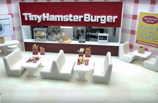 Des hamsters mangent des plats rikikis sur YouTube et je suis en amour