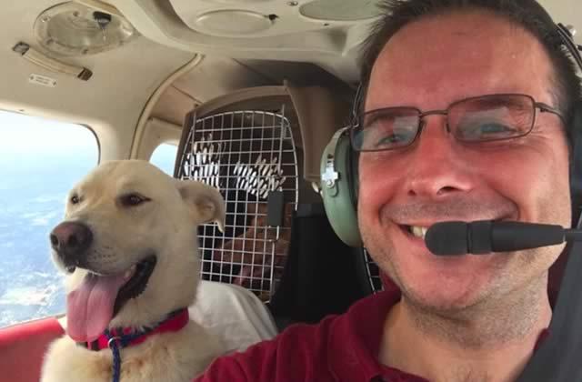 L'histoire du mec qui s'est acheté un avion pour sauver des chiens