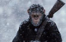 5 films dans lesquels les animaux prennent le pouvoir