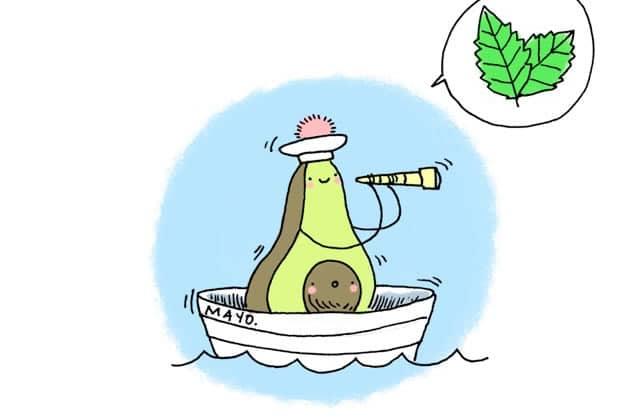 Les rillettes vertes et fraîches pour tes apéros—La recette illustrée!