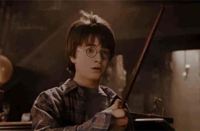 Les baguettes magiques d'Harry Potter à l'honneur dans un nouveau livre!
