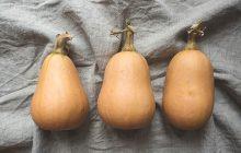 Trois qualités inculquées par le butternut, ou comment une courge a changé ma vie