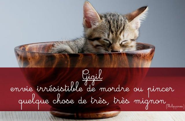 Les mots étrangers qu'il faudrait ajouter à la langue française