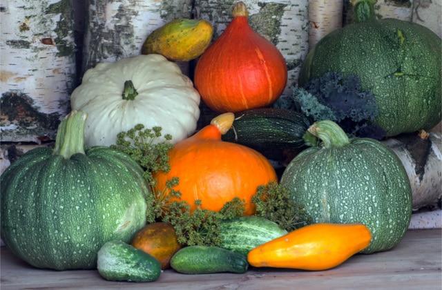 Que vas-tu manger en janvier ? Petite sélection de fruits et légumes de saison