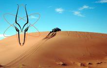 Le Rallye des Gazelles dans le Sahara, un défi à relever pour Leïla et Stéphanie