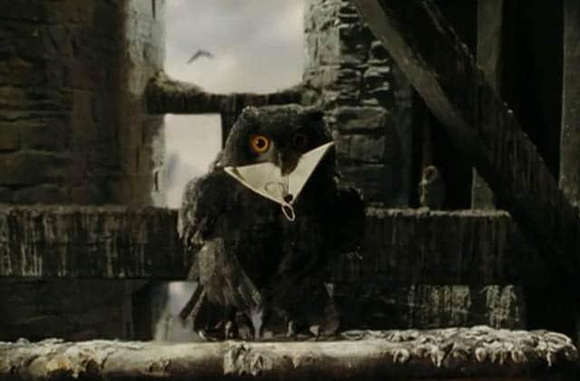 Recevoir son courrier par hibou (oui, comme Harry), c'est possible !