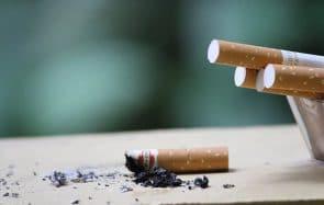 Tous les parcs deviennent non-fumeurs à Strasbourg, une 1ère en France