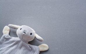 Dix peluches rassurantes à t'offrir — ou te faire offrir — lorsque tu quittes le domicile familial