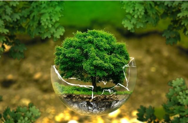 Le monde entier s'est mobilisé pour nettoyer la planète en un jour