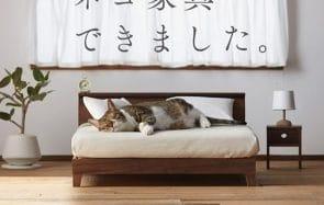 Ce mobilier pour chat est si élégant que j'en deviens jalouse