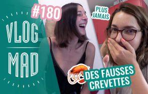 Vlogmad n°180 — Les expériences étranges de Queen Camille