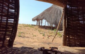 Je suis partie travailler en Guinée pour une ONG et cette vie me plaît