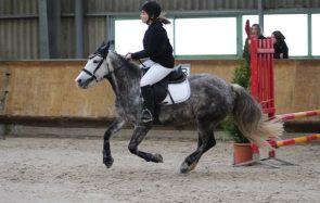 5 leçons de vie que l'équitation m'a apprises