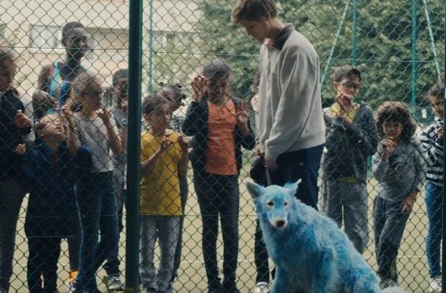 Découvre Chien bleu, mon court-métrage coup de cœur nommé aux César