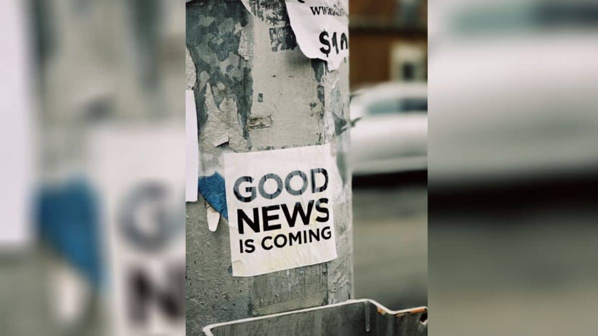 Les bonnes nouvelles du confifi pour se remonter le moral