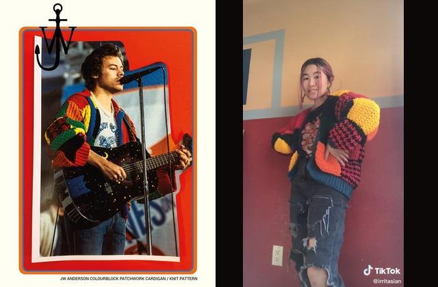 Les fans de Harry Styles reproduisent son cardigan en tricot sur TikTok