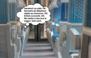 Comment être LA PIRE PERSONNE dans un train