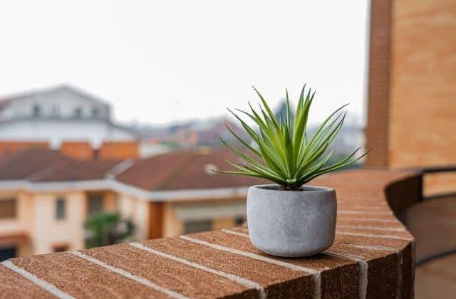 4 façons d'avoir sa dose de nature quand on habite en ville