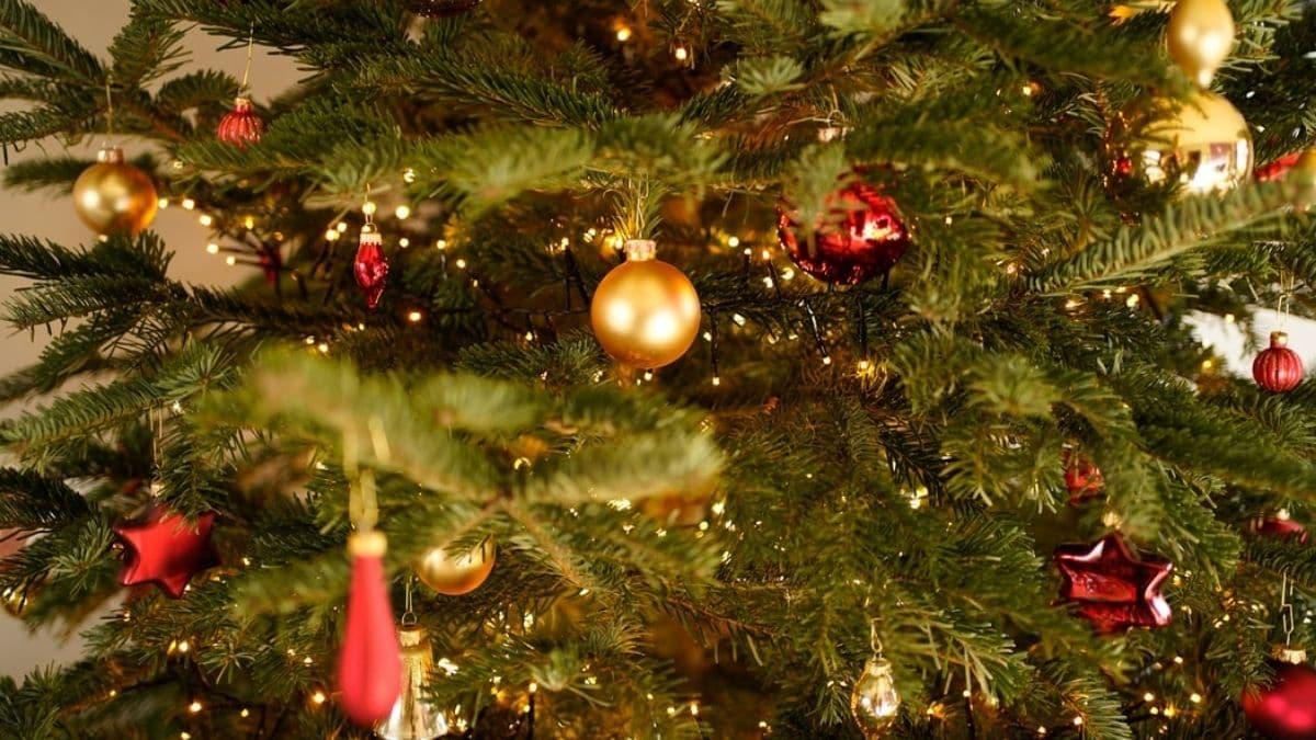 Vous pouvez (enfin) acheter un sapin de Noël, mais il va falloir recycler vos décorations