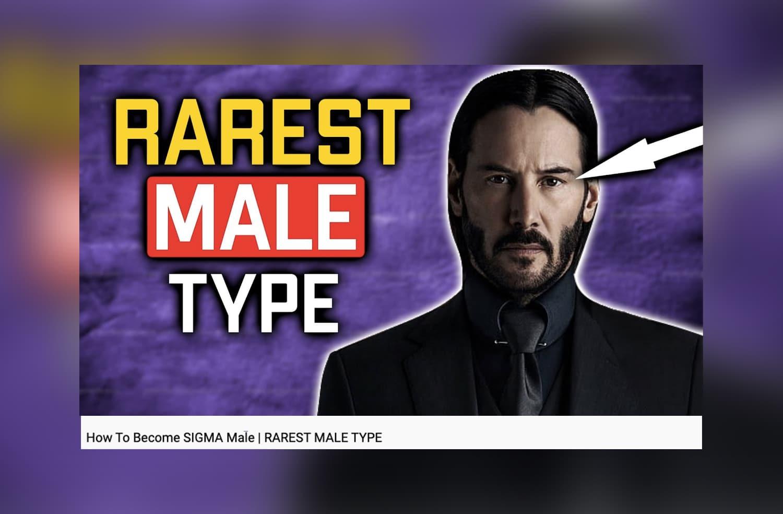Nouveau délire mascu:voilà le «mâle sigma», encore moins sympa que le «mâle alpha»