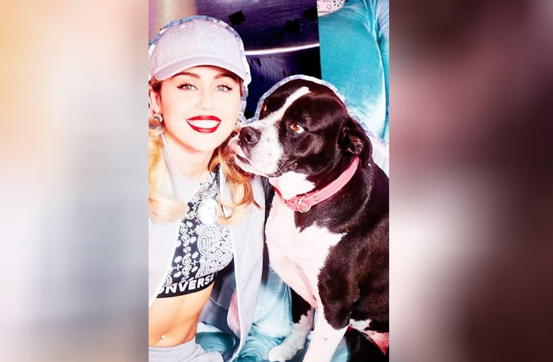 Miley Cyrus chante-t-elle pour son chien… Ou pour son ex?