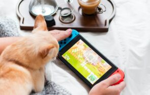 Animal Crossing sur une Nintendo Switch